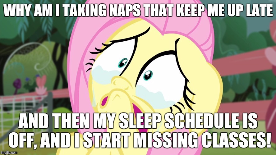 I am having a super tough time with this! | WHY AM I TAKING NAPS THAT KEEP ME UP LATE AND THEN MY SLEEP SCHEDULE IS OFF, AND I START MISSING CLASSES! | image tagged in crying fluttershy,memes,college,sleep | made w/ Imgflip meme maker