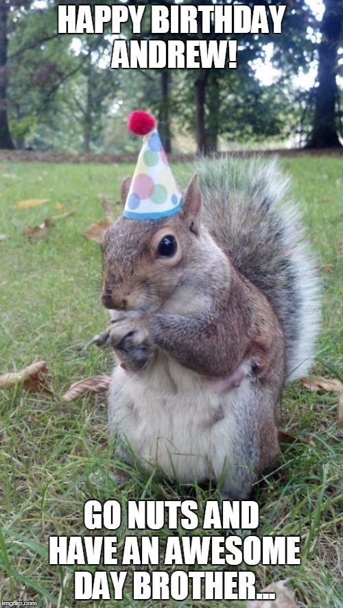 Super Birthday Squirrel |  HAPPY BIRTHDAY ANDREW! GO NUTS AND HAVE AN AWESOME DAY BROTHER... | image tagged in memes,super birthday squirrel | made w/ Imgflip meme maker
