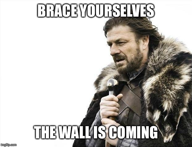 Brace Yourselves X is Coming Meme | BRACE YOURSELVES THE WALL IS COMING | image tagged in memes,brace yourselves x is coming | made w/ Imgflip meme maker