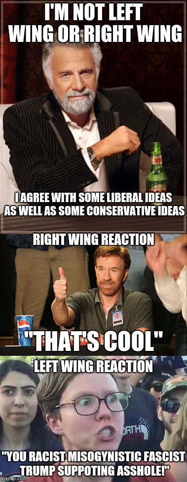 "America In a Nutshell | I'M NOT LEFT WING OR RIGHT WING I AGREE WITH SOME LIBERAL IDEAS AS WELL AS SOME CONSERVATIVE IDEAS RIGHT WING REACTION ""THAT'S COOL"" LEFT WI 