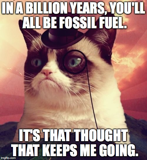 Grumpy Cat takes the long view. | IN A BILLION YEARS, YOU'LL ALL BE FOSSIL FUEL. IT'S THAT THOUGHT THAT KEEPS ME GOING. | image tagged in memes,grumpy cat top hat,grumpy cat | made w/ Imgflip meme maker