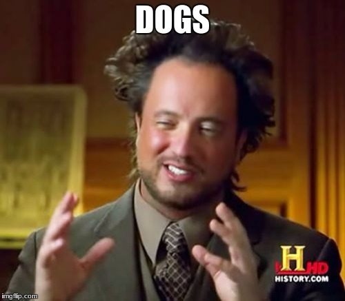Ancient Aliens Meme | DOGS | image tagged in memes,ancient aliens | made w/ Imgflip meme maker