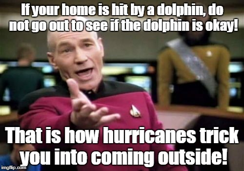 Picard Wtf Meme | If your home is hit by a dolphin, do not go out to see if the dolphin is okay! That is how hurricanes trick you into coming outside! | image tagged in memes,picard wtf | made w/ Imgflip meme maker