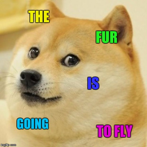 Doge Meme | THE FUR IS GOING TO FLY | image tagged in memes,doge | made w/ Imgflip meme maker