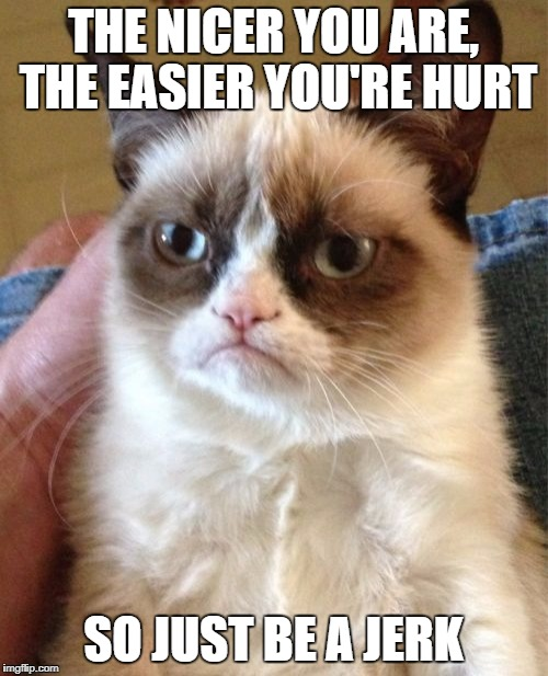 Grumpy Cat Meme | THE NICER YOU ARE, THE EASIER YOU'RE HURT SO JUST BE A JERK | image tagged in memes,grumpy cat | made w/ Imgflip meme maker