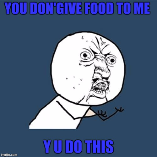 Y U No Meme | YOU DON'GIVE FOOD TO ME Y U DO THIS | image tagged in memes,y u no | made w/ Imgflip meme maker