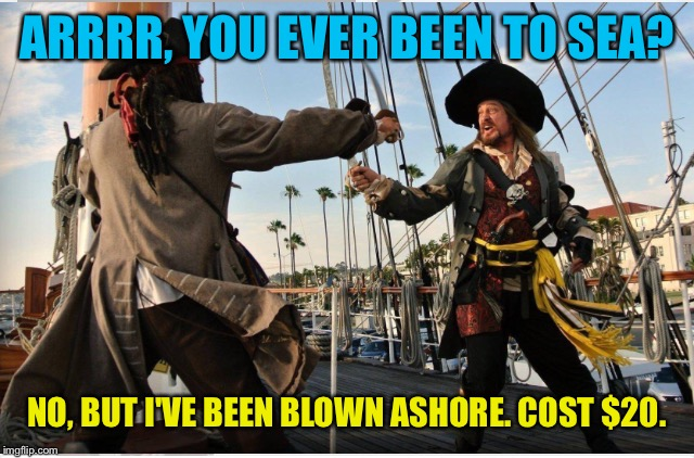 ARRRR, YOU EVER BEEN TO SEA? NO, BUT I'VE BEEN BLOWN ASHORE. COST $20. | made w/ Imgflip meme maker
