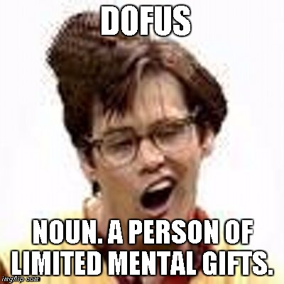 Dofus | DOFUS NOUN. A PERSON OF LIMITED MENTAL GIFTS. | image tagged in dofus,definition | made w/ Imgflip meme maker