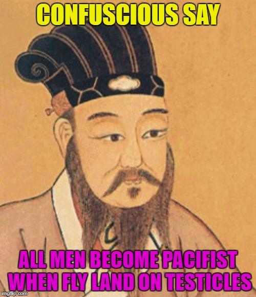 Confuscious So Wise Though | CONFUSCIOUS SAY ALL MEN BECOME PACIFIST WHEN FLY LAND ON TESTICLES | image tagged in confuscious,memes,funny memes,wisdom,brilliant | made w/ Imgflip meme maker