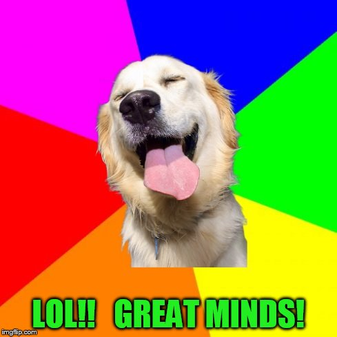 Anti Pun Dog | LOL!!   GREAT MINDS! | image tagged in anti pun dog | made w/ Imgflip meme maker
