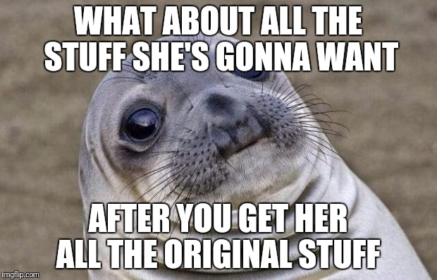 Awkward Moment Sealion Meme | WHAT ABOUT ALL THE STUFF SHE'S GONNA WANT AFTER YOU GET HER ALL THE ORIGINAL STUFF | image tagged in memes,awkward moment sealion | made w/ Imgflip meme maker