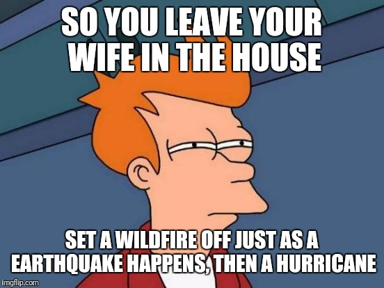Futurama Fry Meme | SO YOU LEAVE YOUR WIFE IN THE HOUSE SET A WILDFIRE OFF JUST AS A EARTHQUAKE HAPPENS, THEN A HURRICANE | image tagged in memes,futurama fry | made w/ Imgflip meme maker