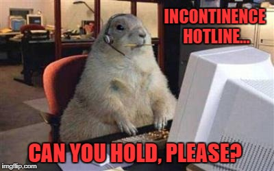 INCONTINENCE HOTLINE... CAN YOU HOLD, PLEASE? | image tagged in squirrel | made w/ Imgflip meme maker