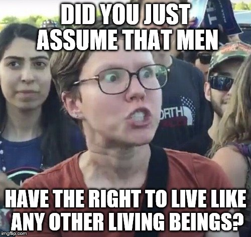 Triggered feminist | DID YOU JUST ASSUME THAT MEN HAVE THE RIGHT TO LIVE LIKE ANY OTHER LIVING BEINGS? | image tagged in triggered feminist | made w/ Imgflip meme maker