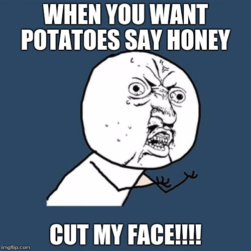 Y U No | WHEN YOU WANT POTATOES SAY HONEY CUT MY FACE!!!! | image tagged in memes,y u no | made w/ Imgflip meme maker