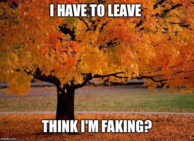 I HAVE TO LEAVE THINK I'M FAKING? | made w/ Imgflip meme maker