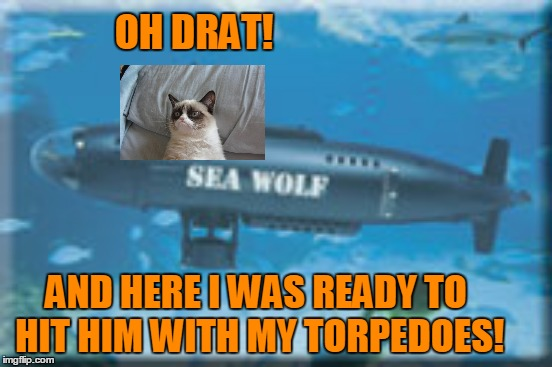 OH DRAT! AND HERE I WAS READY TO HIT HIM WITH MY TORPEDOES! | made w/ Imgflip meme maker