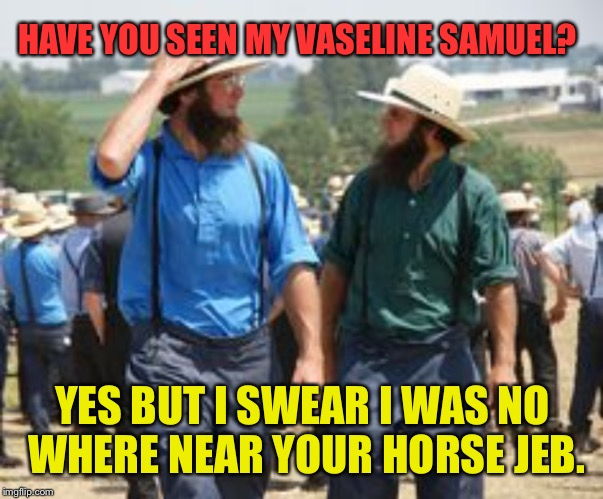HAVE YOU SEEN MY VASELINE SAMUEL? YES BUT I SWEAR I WAS NO WHERE NEAR YOUR HORSE JEB. | made w/ Imgflip meme maker