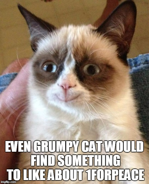 EVEN GRUMPY CAT WOULD FIND SOMETHING TO LIKE ABOUT 1FORPEACE | made w/ Imgflip meme maker