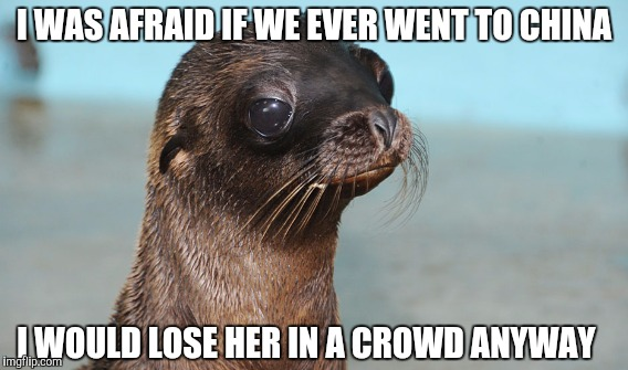 I WAS AFRAID IF WE EVER WENT TO CHINA I WOULD LOSE HER IN A CROWD ANYWAY | made w/ Imgflip meme maker