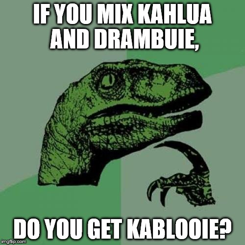 Philosoraptor |  IF YOU MIX KAHLUA AND DRAMBUIE, DO YOU GET KABLOOIE? | image tagged in memes,philosoraptor | made w/ Imgflip meme maker