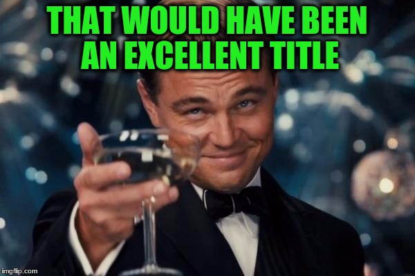 Leonardo Dicaprio Cheers Meme | THAT WOULD HAVE BEEN AN EXCELLENT TITLE | image tagged in memes,leonardo dicaprio cheers | made w/ Imgflip meme maker