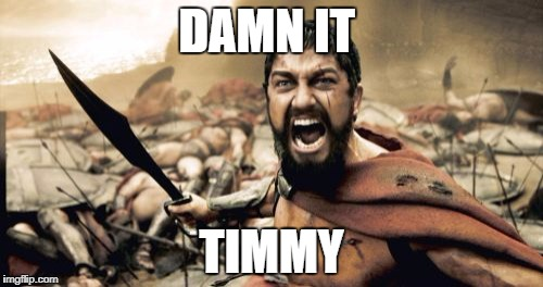 Sparta Leonidas Meme | DAMN IT TIMMY | image tagged in memes,sparta leonidas | made w/ Imgflip meme maker