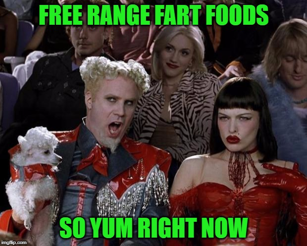 Mugatu So Hot Right Now Meme | FREE RANGE FART FOODS SO YUM RIGHT NOW | image tagged in memes,mugatu so hot right now | made w/ Imgflip meme maker
