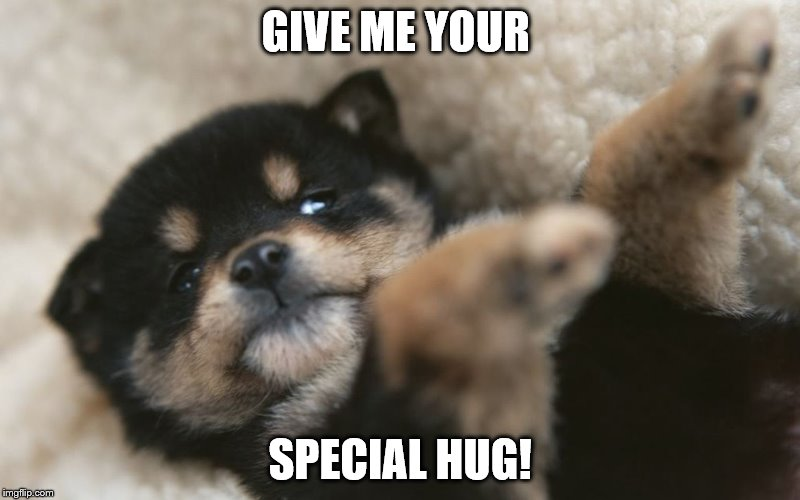 I need your special hug! | GIVE ME YOUR SPECIAL HUG! | image tagged in dog | made w/ Imgflip meme maker