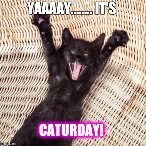 Happy cat  | YAAAAY........ IT'S CATURDAY! | image tagged in happy cat | made w/ Imgflip meme maker