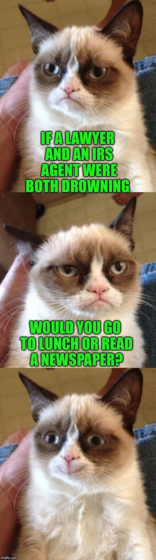 Bad Pun Grumpy Cat | IF A LAWYER AND AN IRS AGENT WERE BOTH DROWNING WOULD YOU GO TO LUNCH OR READ A NEWSPAPER? | image tagged in bad pun grumpy cat | made w/ Imgflip meme maker