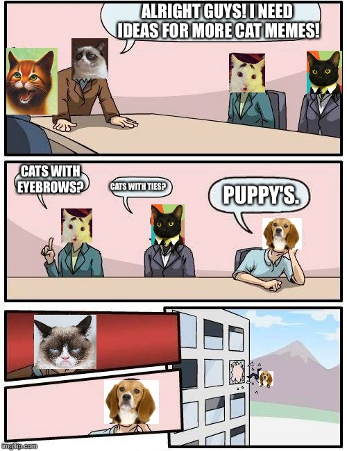 Boardroom Meeting Suggestion Meme | ALRIGHT GUYS! I NEED IDEAS FOR MORE CAT MEMES! CATS WITH EYEBROWS? CATS WITH TIES? PUPPY'S. | image tagged in memes,boardroom meeting suggestion | made w/ Imgflip meme maker
