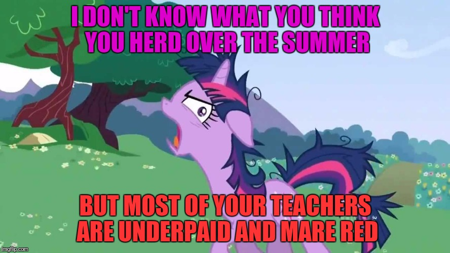 I DON'T KNOW WHAT YOU THINK YOU HERD OVER THE SUMMER BUT MOST OF YOUR TEACHERS ARE UNDERPAID AND MARE RED | made w/ Imgflip meme maker