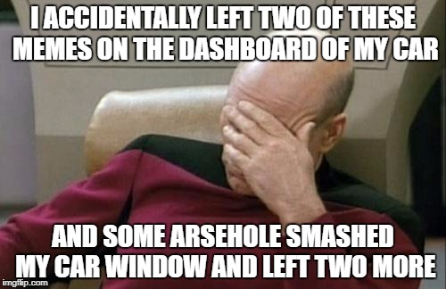 Is this actually what this meme is meant for? | I ACCIDENTALLY LEFT TWO OF THESE MEMES ON THE DASHBOARD OF MY CAR AND SOME ARSEHOLE SMASHED MY CAR WINDOW AND LEFT TWO MORE | image tagged in memes,captain picard facepalm,dank memes,meanwhile on imgflip,funny,bad puns | made w/ Imgflip meme maker