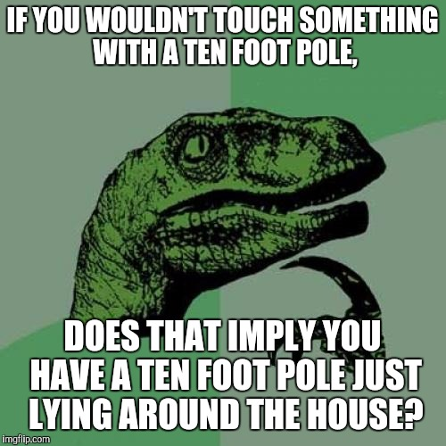 Philosoraptor Meme | IF YOU WOULDN'T TOUCH SOMETHING WITH A TEN FOOT POLE, DOES THAT IMPLY YOU HAVE A TEN FOOT POLE JUST LYING AROUND THE HOUSE? | image tagged in memes,philosoraptor | made w/ Imgflip meme maker