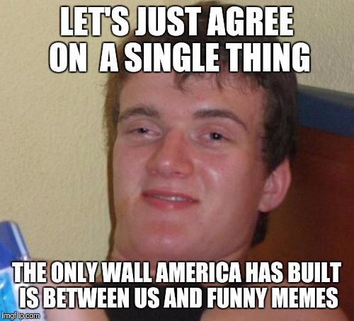 10 Guy Meme | LET'S JUST AGREE ON  A SINGLE THING THE ONLY WALL AMERICA HAS BUILT IS BETWEEN US AND FUNNY MEMES | image tagged in memes,10 guy | made w/ Imgflip meme maker