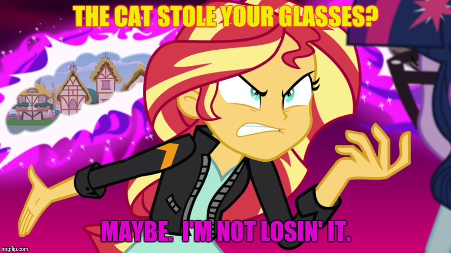 THE CAT STOLE YOUR GLASSES? MAYBE.  I'M NOT LOSIN' IT. | made w/ Imgflip meme maker