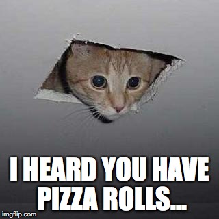 Ceiling Cat Meme | I HEARD YOU HAVE PIZZA ROLLS... | image tagged in memes,ceiling cat | made w/ Imgflip meme maker