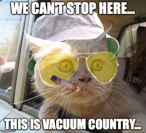 Fear And Loathing Cat | WE CAN'T STOP HERE... THIS IS VACUUM COUNTRY... | image tagged in memes,fear and loathing cat | made w/ Imgflip meme maker