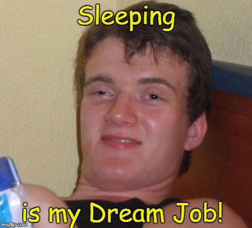 10 Guy Meme | Sleeping is my Dream Job! | image tagged in memes,10 guy | made w/ Imgflip meme maker