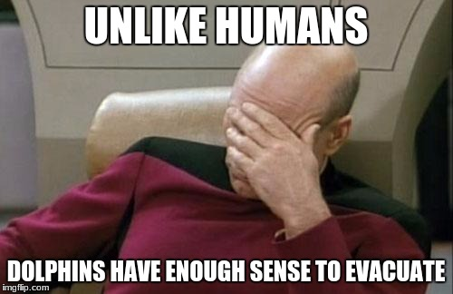 Captain Picard Facepalm Meme | UNLIKE HUMANS DOLPHINS HAVE ENOUGH SENSE TO EVACUATE | image tagged in memes,captain picard facepalm | made w/ Imgflip meme maker