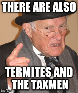 Back In My Day Meme | THERE ARE ALSO TERMITES AND THE TAXMEN | image tagged in memes,back in my day | made w/ Imgflip meme maker