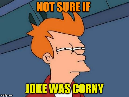 Futurama Fry Meme | NOT SURE IF JOKE WAS CORNY | image tagged in memes,futurama fry | made w/ Imgflip meme maker