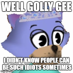 Well Golly Gee | WELL GOLLY GEE I DIDN'T KNOW PEOPLE CAN BE SUCH IDIOTS SOMETIMES | image tagged in well golly gee,idiots,cats,cute cat,cute cats,looks are deceiving | made w/ Imgflip meme maker