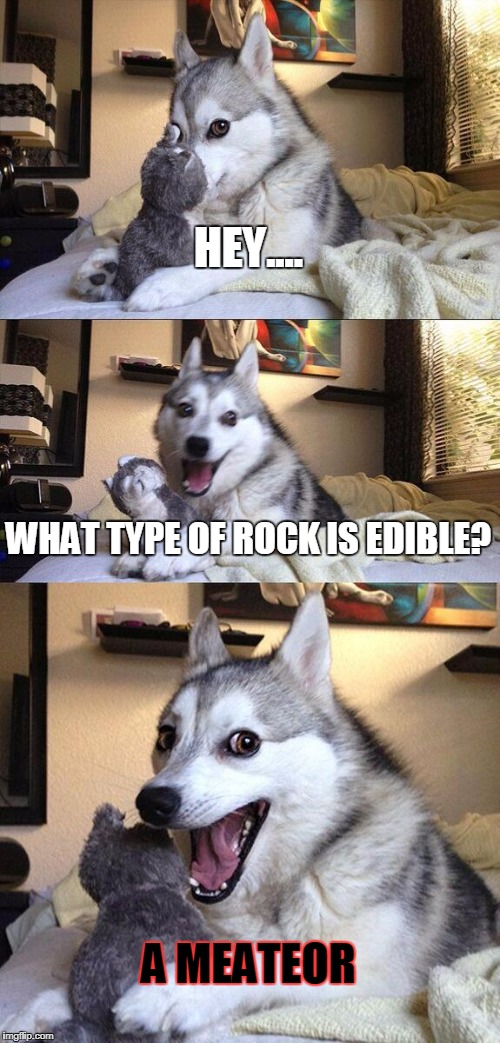 Bad Pun Dog Meme | HEY.... WHAT TYPE OF ROCK IS EDIBLE? A MEATEOR | image tagged in memes,bad pun dog | made w/ Imgflip meme maker