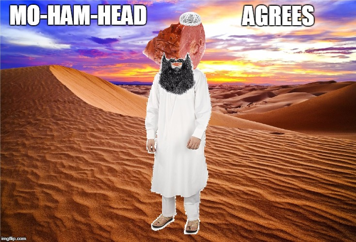 mo ham head | MO-HAM-HEAD AGREES | image tagged in mo ham head | made w/ Imgflip meme maker