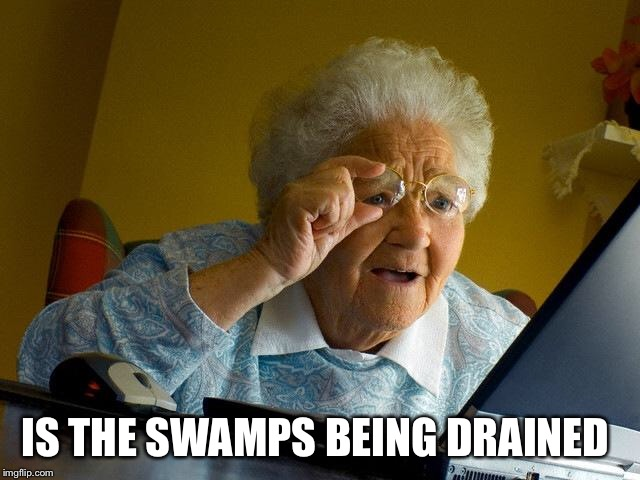 Grandma Finds The Internet Meme | IS THE SWAMPS BEING DRAINED | image tagged in memes,grandma finds the internet | made w/ Imgflip meme maker