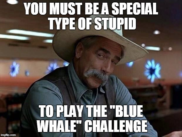 "special kind of stupid | YOU MUST BE A SPECIAL TYPE OF STUPID TO PLAY THE ""BLUE WHALE"" CHALLENGE 