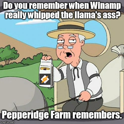 If you weren't on the Internet by 2003, you may not. | Do you remember when Winamp really whipped the llama's ass? Pepperidge Farm remembers. | image tagged in pepperidge farm remembers,memes | made w/ Imgflip meme maker