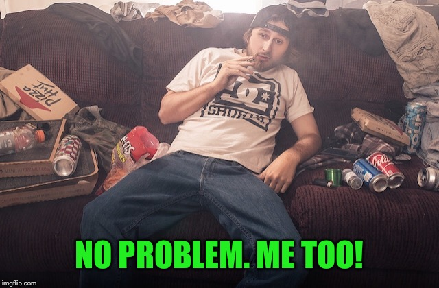 Stoner on couch | NO PROBLEM. ME TOO! | image tagged in stoner on couch | made w/ Imgflip meme maker